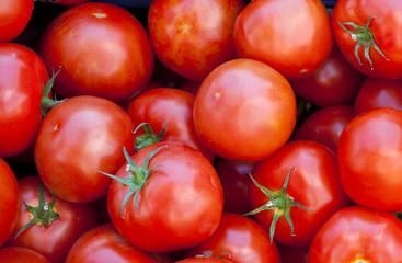 Świeże pomidory na targu