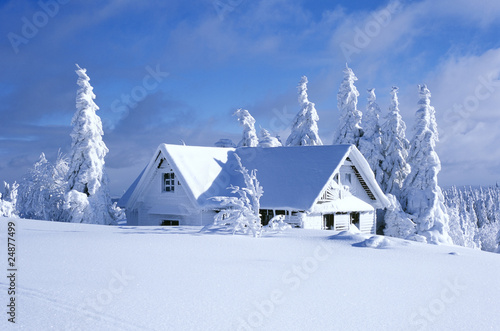 Slika na platnu cottage in winter, Orlicke hory, Czech Republic