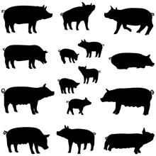 Porc Truie Et Porcelet Silhoue...