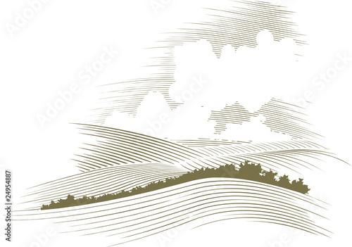 Obraz na płótnie Woodcut Skyscape