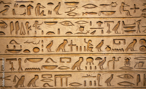 Tuinposter Egypte hieroglyphs carved on the stone