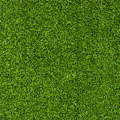 Fototapeta Artificial Grass Field Top View Texture