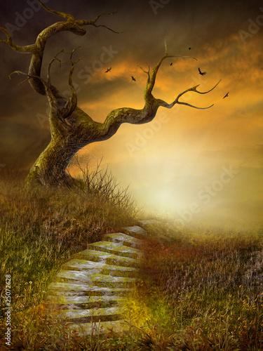 jesienna-sceneria-z-kamiennymi-schodami