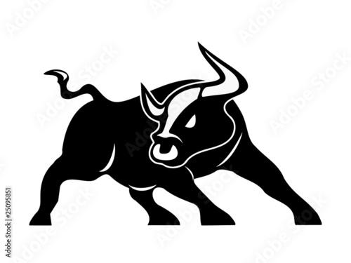Fotografie, Obraz  angry bull