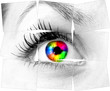 canvas print picture - colourful human eye