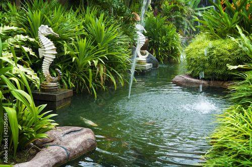 Photo  Tropical zen garden