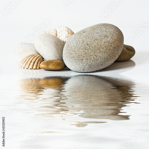 Láminas  galets et coquillages sur l'eau