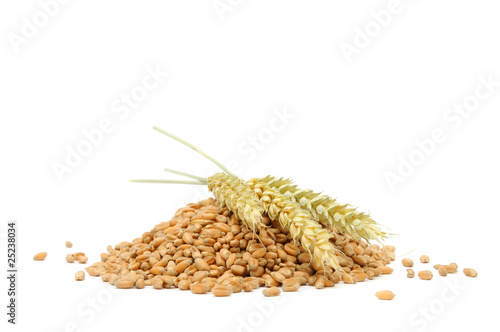 Pile of Wheat with Ears