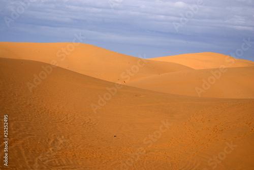 Foto op Aluminium Koraal Sand dunes in Muine, Vietnam