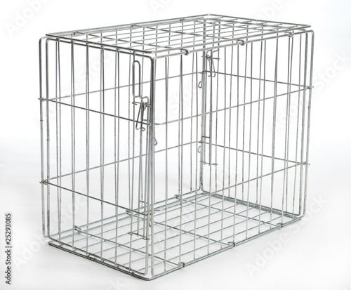 wire animal cage Canvas Print