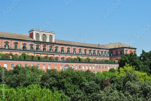 Fotografie, Obraz  Napoli - Palazzo Reale