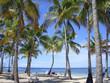 Plage la Guadeloupe
