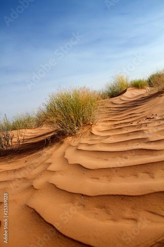 Dekoracja na wymiar rozowe-wydmy