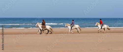 Photo  ballade de chevaux sur la plage