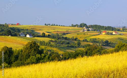 Foto op Aluminium Oranje Wavy fields and village