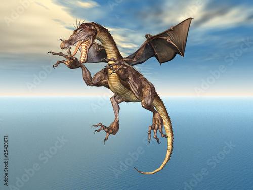 Poster Draken Dragon