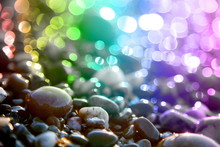 Colored Circles And Marine Stones.