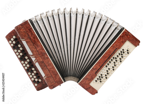Fotografía  Brown bayan (accordion) isolated on white background