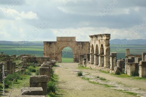 Staande foto Algerije Volubilis