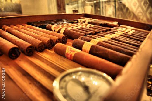 Club cigare Fototapet