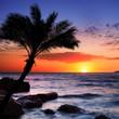 Beautiful sunset at tropical beach.