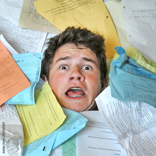 Fotografie, Obraz  Too Much Homework Assignments
