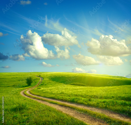 Foto op Canvas Landschappen Summer landscape with green grass, road and clouds