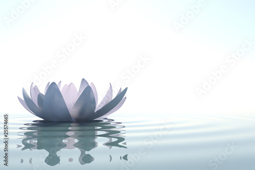 Stampa su Tela Zen flower loto in water