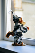 Toy Monkey In A Suit Of The Prisoner