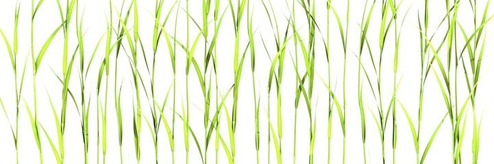 Panel Szklany Podświetlane Skandynawski plantes