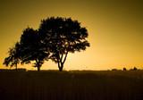 Zachód słońca na wsi