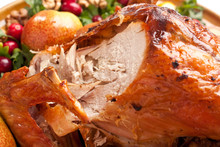 Carved Roasted Holiday Turkey