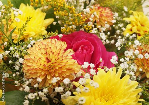 Fototapety, obrazy: Bouquet