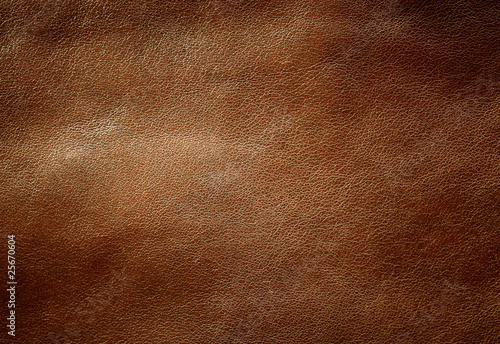 Fotografia, Obraz Brown shiny leather texture.