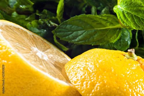 Photo Zitrone aufgeschnitten mit Minze