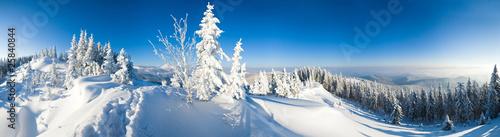 Fototapeta zima zimowa-panorama-gor