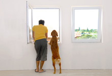 Man And Dog Looking Through Window