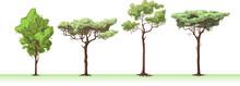 Four Trees.