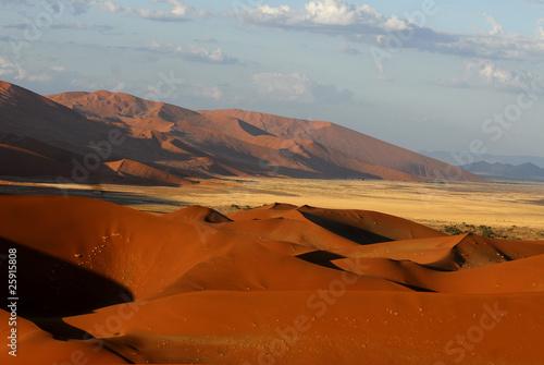 Tuinposter Algerije Sossusvlei Sanddünen
