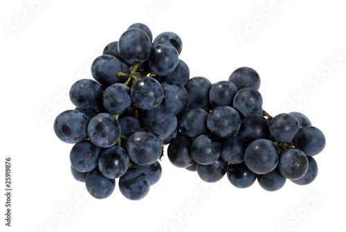 Fotografiet fresh picked concord grapes
