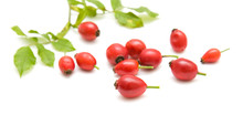 Rosehips Isolated On White