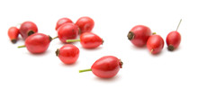 Rosehips Isolated On White;