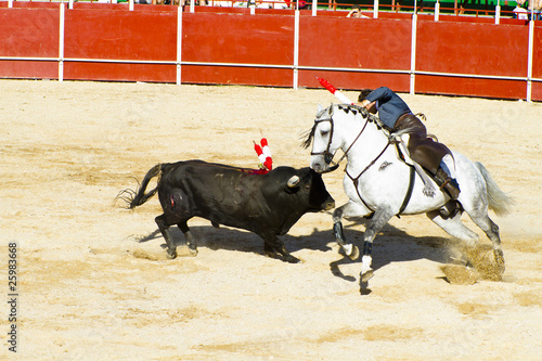 Spoed Foto op Canvas Stierenvechten Bullfight on horseback. Typical Spanish bullfight.