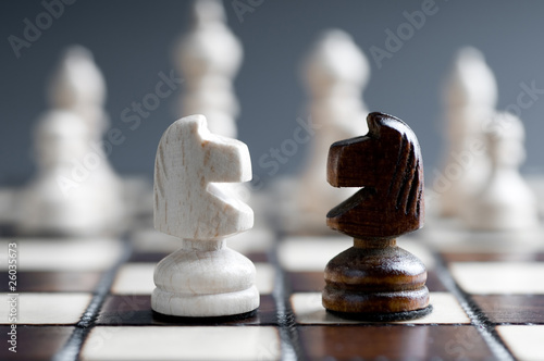 Fotomural two wooden chess horses