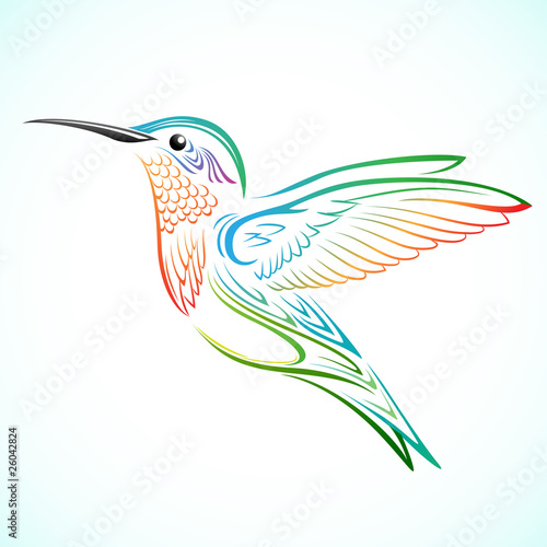 Fototapeta colorful hummingbird