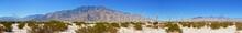 Palm Springs Windmill Panoramic