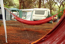 Camping,rain On Hammock And Tent