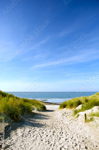 Obraz Beach and sand dunes - fototapety do salonu