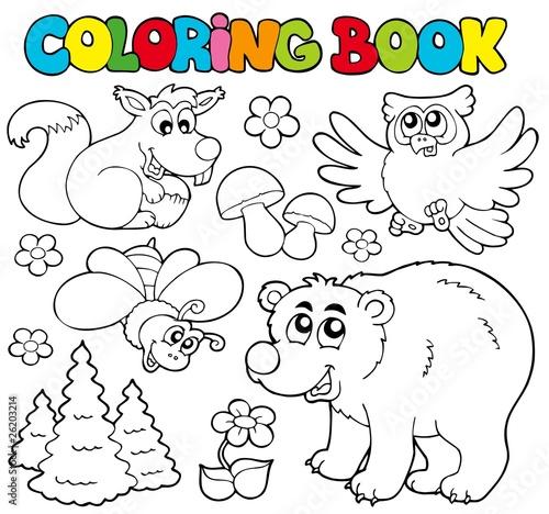 Tuinposter Doe het zelf Coloring book with forest animals 1