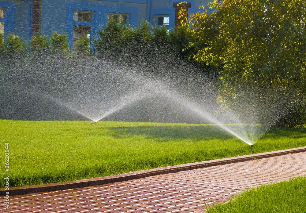 Fototapety, obrazy: sprinkler of automatic watering in garden